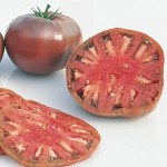 Tomato Beefsteak Cherokee Purple D753A (Purple) 50 Organic Heirloom Seeds by David's Garden Seeds