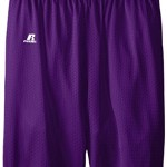 Russell Athletic Big Boys' Youth Mesh Short, Purple, Medium