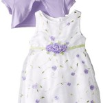 Youngland Baby-Girls Newborn Purple Schiffli Dress with Knit Shrug, White/Purple, 6-9 Months