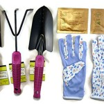 Cute Colorful Garden Tool Gift Set: Trowel, Transplanter, Cultivator and Gloves, Plus Bonus Organic Seeds – Grow Fresh Salad Greens at Home (Purple)