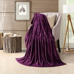 HS Velvet Plush Throw, Home Fleece Throw Blanket,Solid Micro Plush Throw Blanket, 50 by 60-Inch, Purple