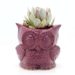 Handmade ceramic utensil holder owl kitchen utensil organizer in purple