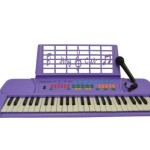 Purple 49 Keys  Keyboard  Electronic Digital Piano With Microphone & notes Holder – with AC Adapter & DirectlyCheap(TM) Translucent Blue Medium Pick