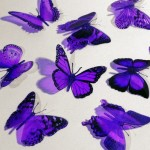 Butterfly 3D PURPLE Butterflies Translucent Decoration 15 count
