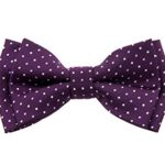 Retreez Dual Color Mini Polka Dots Woven Microfiber Pre-tied Boy's Bow Tie – Dark Purple – 24 months – 4 years