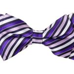 Retreez Retro Multi Tone Stripe Woven Microfiber Pre-tied Boy's Bow Tie – Purple – 8 – 10 years