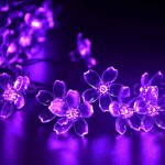 lederTEK Solar Christmas Flower Fairy String Lights 21ft 50 LED Blossom Decorative Light for Garden, Lawn, Patio, Tree, Wedding, Party, Bedroom, Holiday, Xmas Decoration, Indoor and Outdoor(Purple)